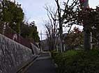 b56.jpg