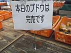b59.jpg