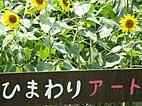 b84.jpg